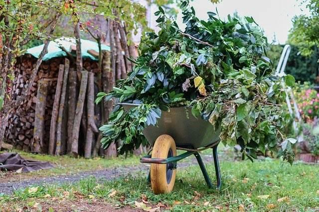 inovativni pripomočki vrt